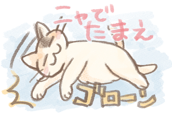 猫 撫でて
